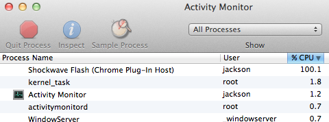 Flash Only Activity Monitor Screenshot